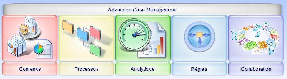 les composantes d'une offre Advanced Case Management IBM